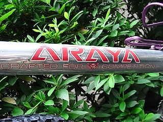 Araya_1